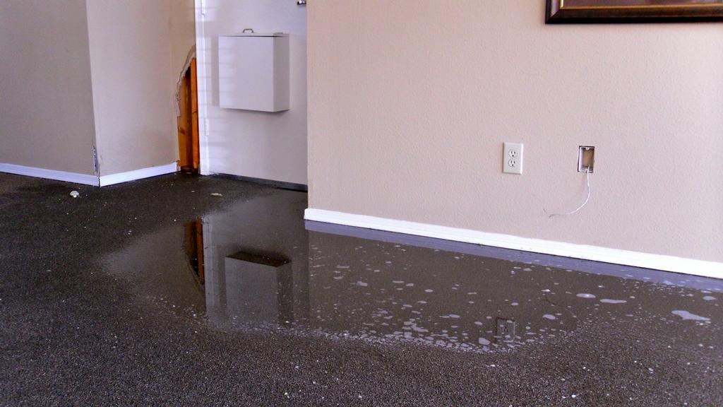 Flood Damage Restoration Garfield North