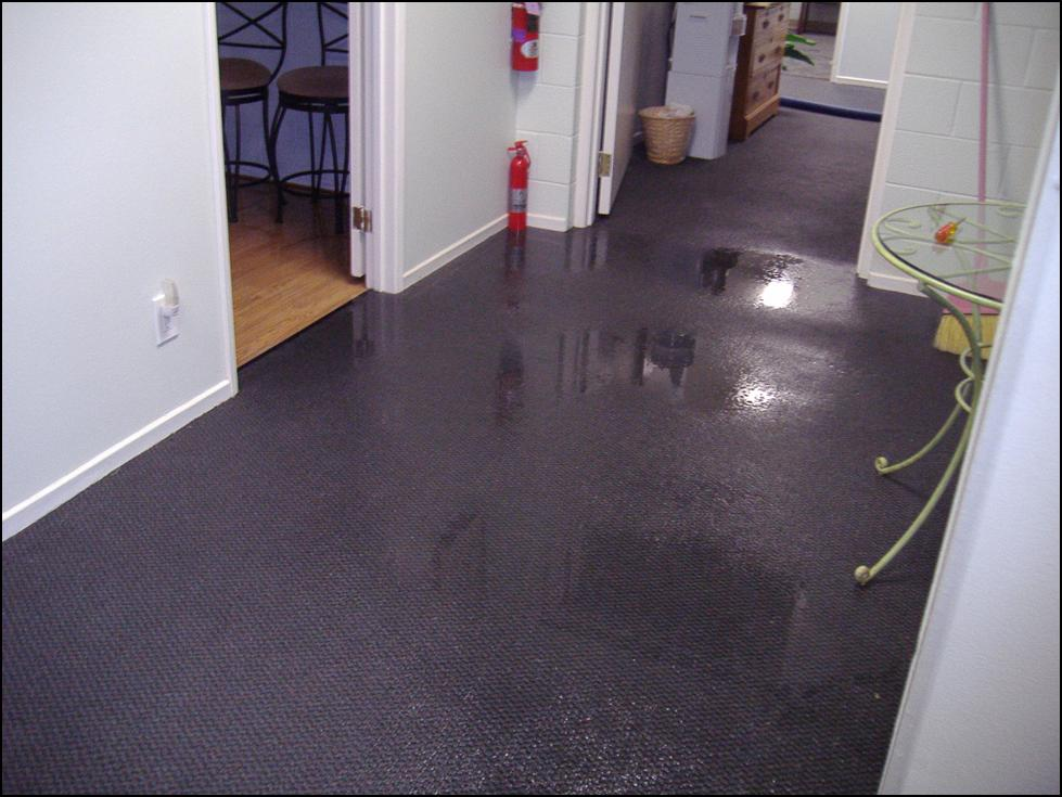 Flood Damage Restoration Carpet Cleaning and Restoration Elevated Plains