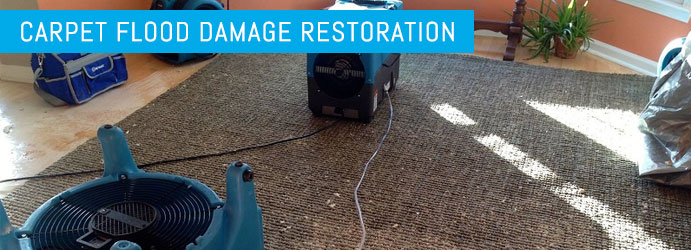 Carpet Flood Damage Restoration Sarabah