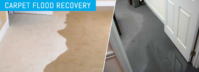 Carpet Flood Recovery Brisbane