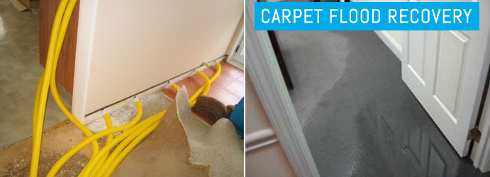 Carpet Flood Recovery Sydney