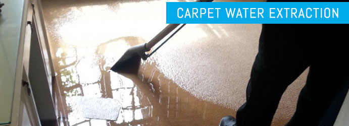 Carpet Water Extraction Karalee
