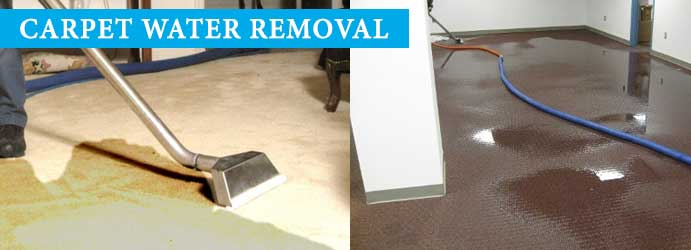 Carpet Water Removal Reservoir