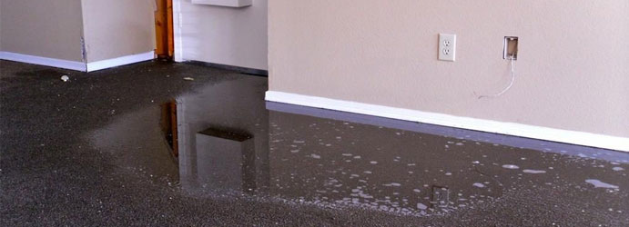 Best Carpet Water Removal Services in Canberra