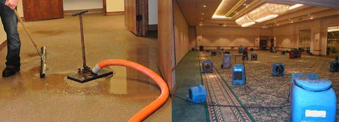 Flood Damage Carpet Restoration Indented Head