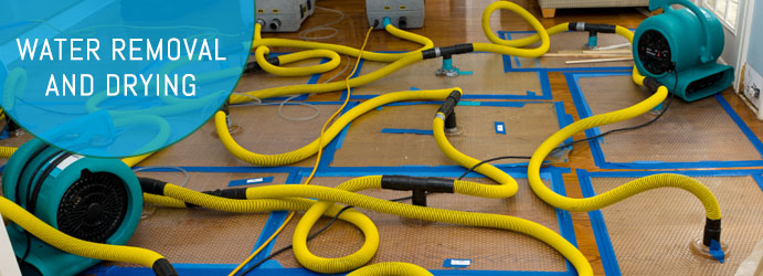 Water Removal and Drying Sydney