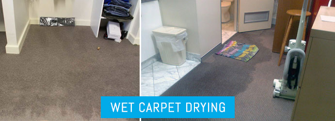 Wet Carpet Drying Brisbane
