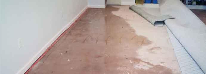 Same Day Carpet Flood Damage Restoration