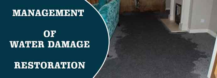 Wet Carpet Restoration Perth