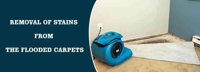 Removal of-stains from the flooded carpets