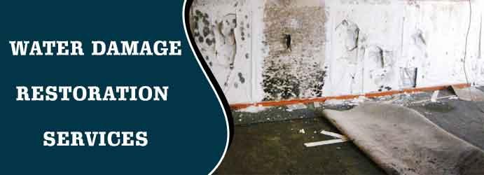 Water Damage Restoration Services