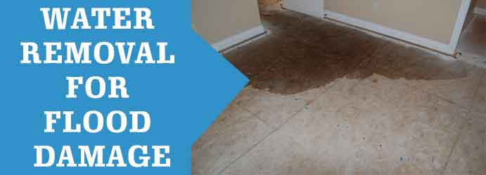 Water Removal for Flood Damage