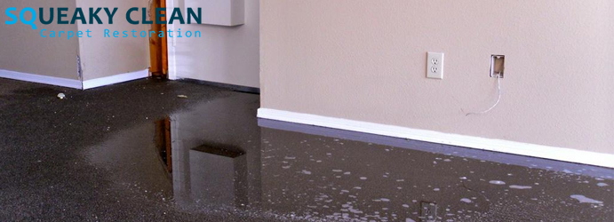 Carpet Water Damage Repair Service Officer