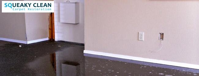 Restore Sewage Water Damage Carpet