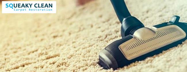 Carpet Sanitization