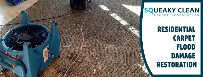 Residential Carpet Flood Damage Restoration