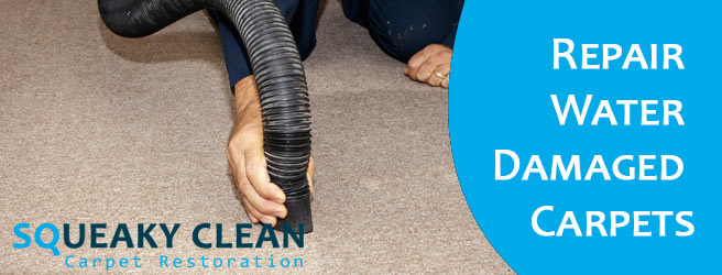 Repair Water Damaged Carpets