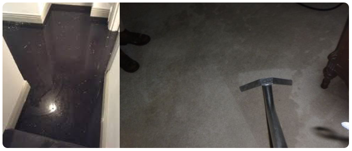 Clean Carpet After Water Damage